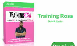 Descargar Training rosa David Ayala Curso SEO General